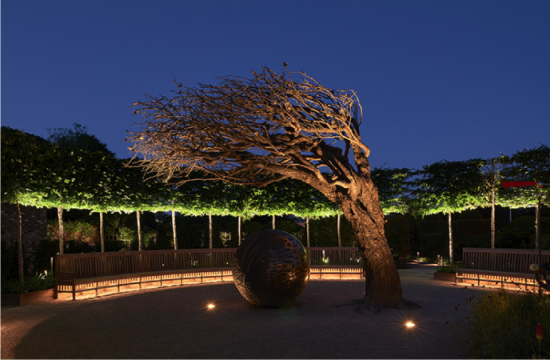 Plazas and Landscape Lighting